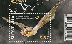 The Slovenian stamp that featured Steve's bat photo. Source: Zurnal24.si