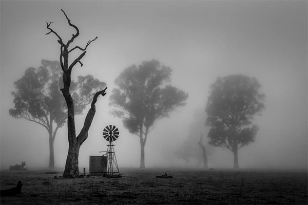 First Place - Mark McLeod - Penola, SA