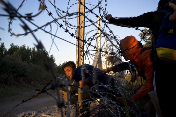 Horgoš, North Banat, Serbia. Refugees make a break into Hungary through the border fence being constructed between Hungary and Serbia. Most were trying to avoid going to camps in Hungary, fearful that if they are registered and fingerprinted there they will eventually be forced to settle there as opposed to a Western European nation. Photo: David Maurice Smith. Source: Walkley.