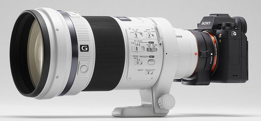 Sony A9 \'should worry Canon and Nikon\' | ProCounterProCounter